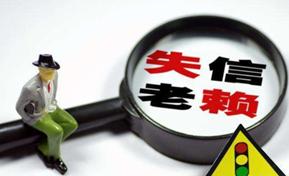 咸宁市召开新闻发布会  通报失信问题治理情况