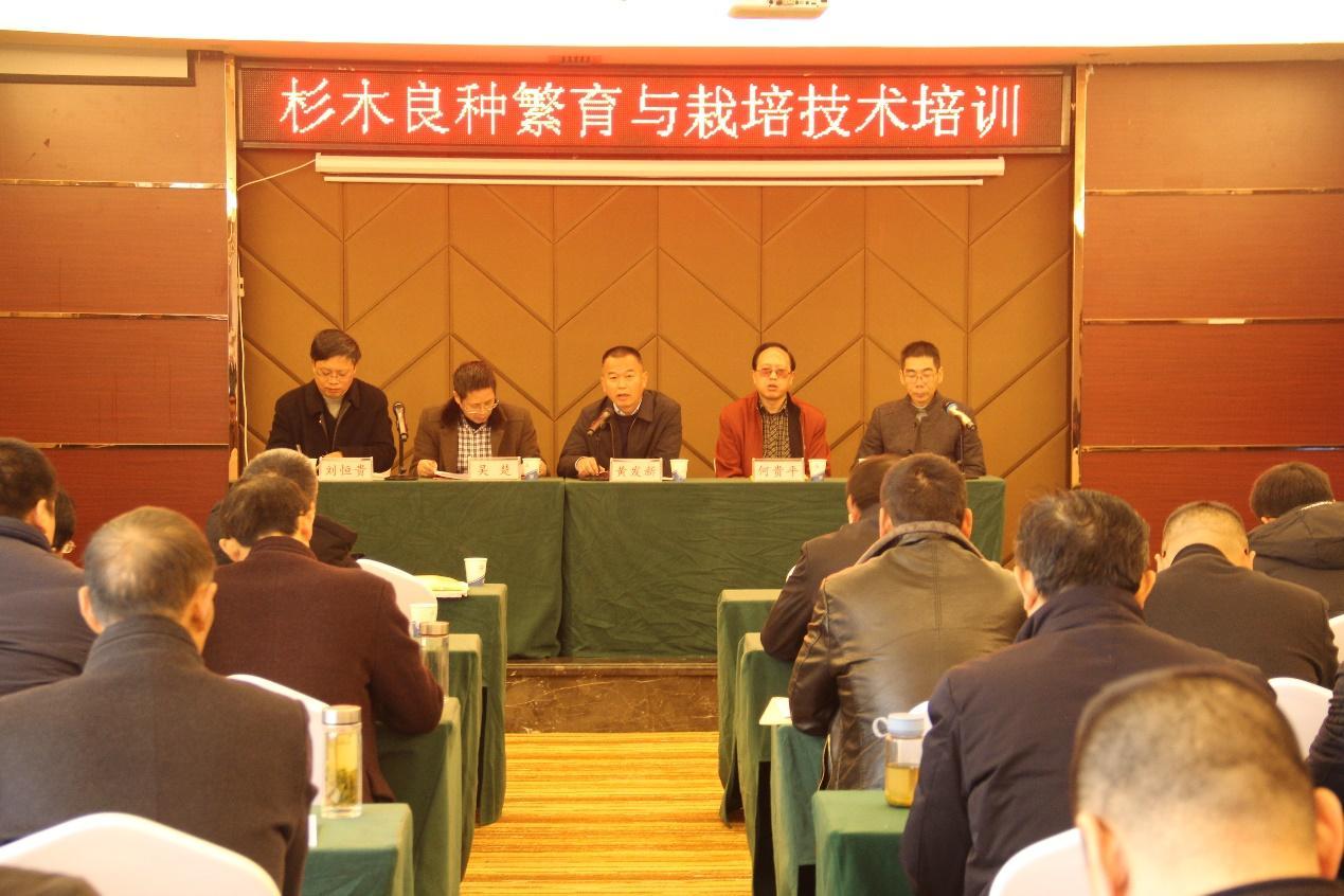"""湖北省""""杉木良种繁育与栽培技术培训会""""在咸宁举办"""