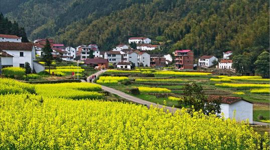 咸宁持续实施乡村建设行动  补短板强产业美环境