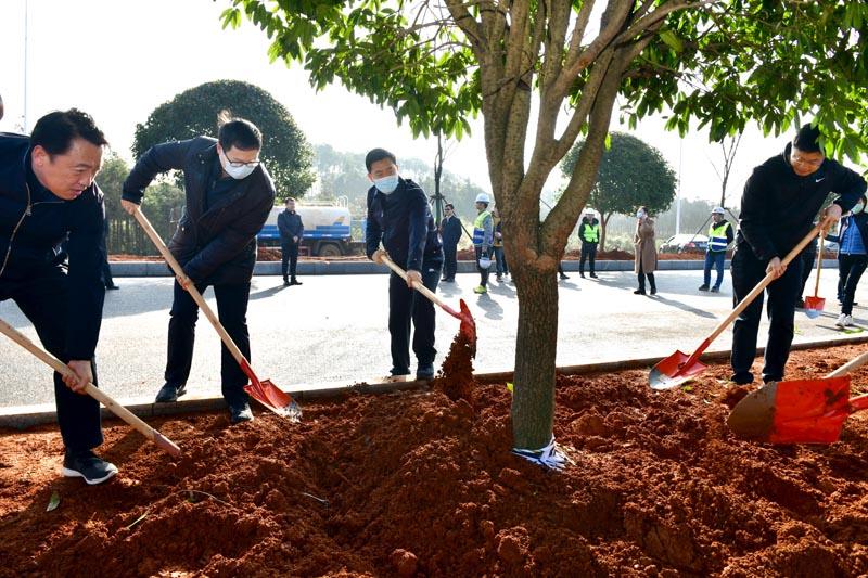 孟祥伟参加植树活动  夯实高质量发展的生态本底