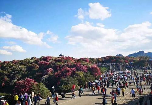 清明假期咸宁迎来旅游小高峰  揽金6.54亿元