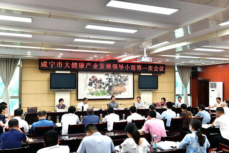 咸宁市大健康产业发展领导小组第一次会议举行